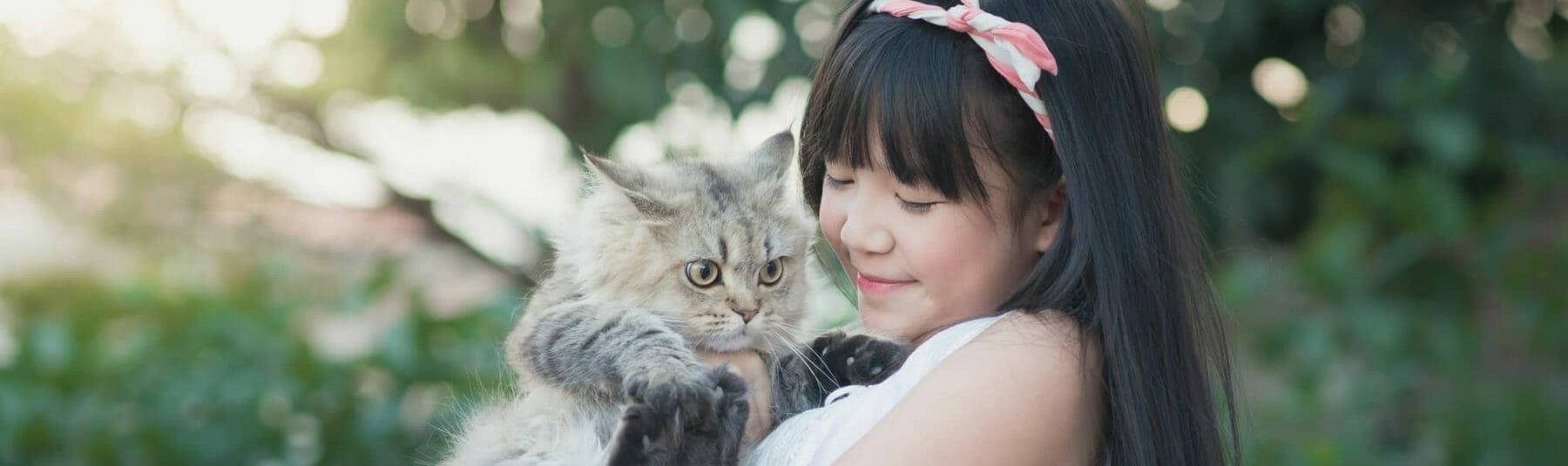 cat services