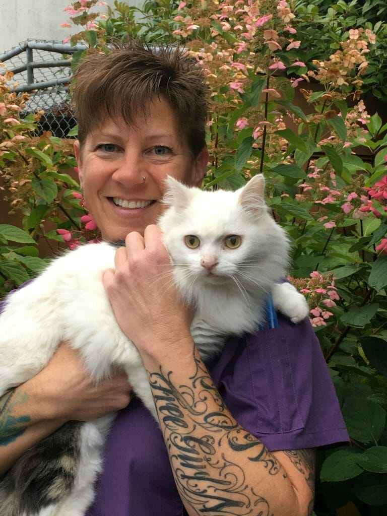 Nina Sleik from Mill Bay Veterinary Hospital holding a white, fluffy cat