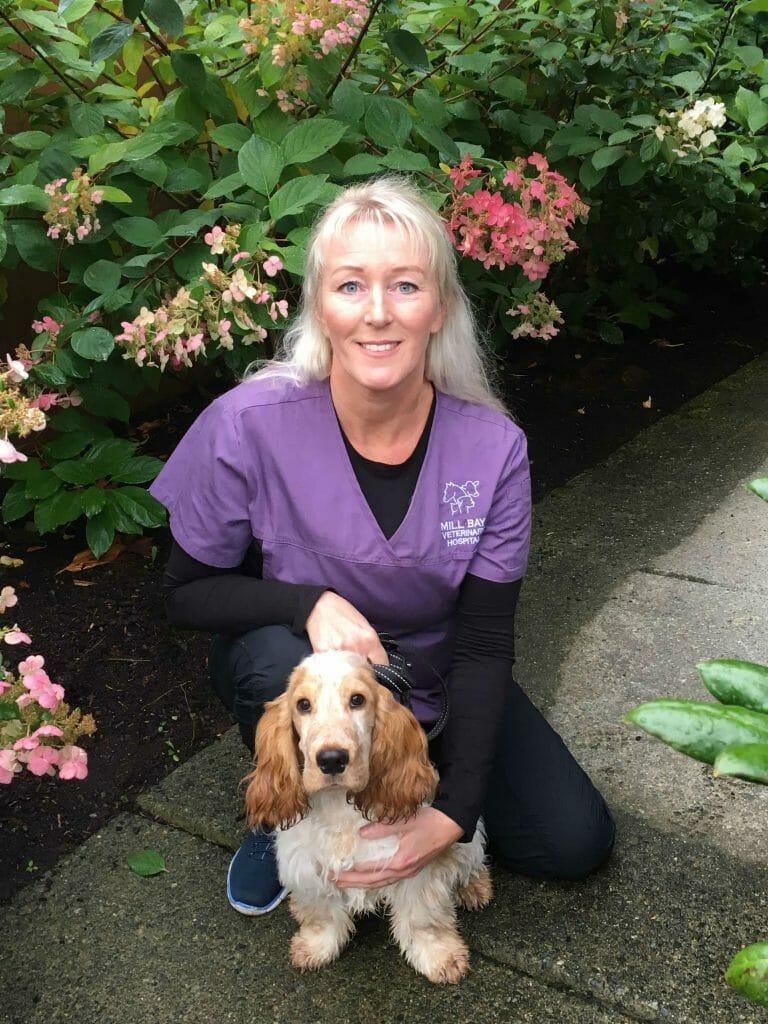 Ineke van Biezen from Mill Bay Veterinary Hospital kneeling beside a golden dog