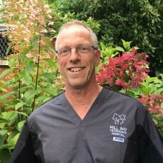 Headshot of Dr. Leo Hylkema from Mill Bay Veterinary Hospital