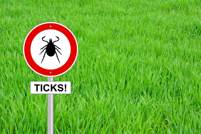 Tick season is here